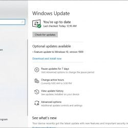 Update 1909 Fails To Install