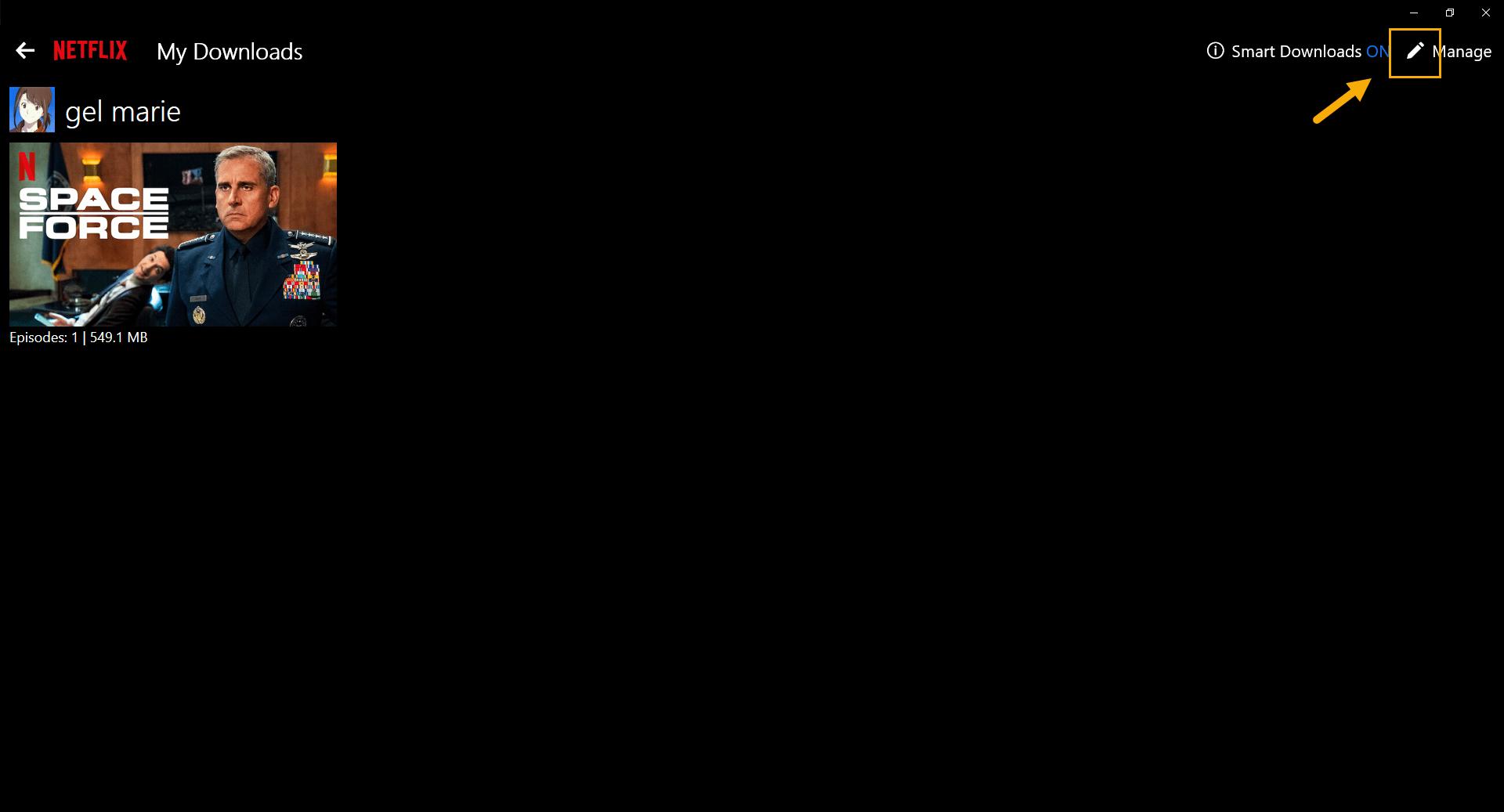 Netflix edit icon